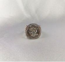 Мужское кольцо с гербом